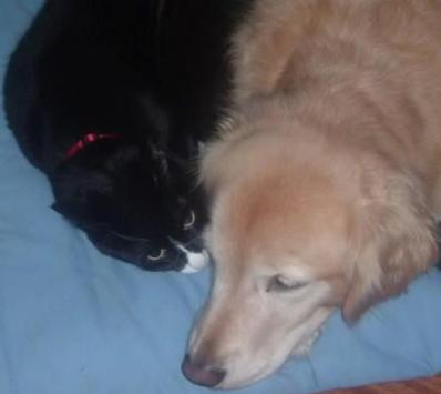 Darwin & Bella